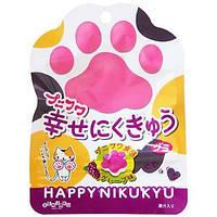 Happy Nikukyu Grape Gumi 30 g