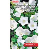 Колокольчик Карпатский белый, многолетнее растение высотой 10-40см, семена цветы 0.01г