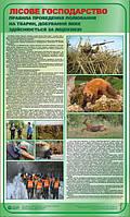 Правила проведення полювання на тварин, добування яких здійснюється за ліцензією.Лісове господарство