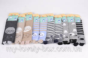 "ОПТОМ.Детские носки на девочку ""Фенна"" ХЛОПОК (FEC010/24-27)   10 пар, фото 3"