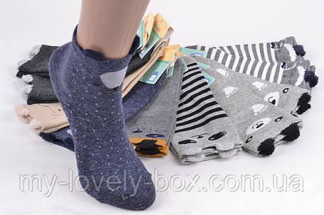 "ОПТОМ.Детские носки на девочку ""Фенна"" ХЛОПОК (FEC010/28-31)   10 пар, фото 2"