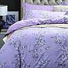 Комплект постельного белья ранфорс 19030