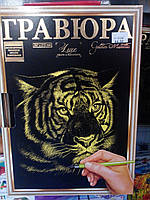 Гравюра А4 LUXE з рамкою Тигр Золото