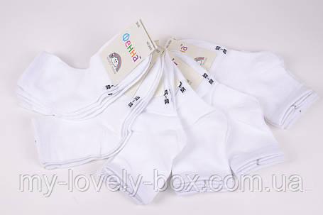 """ОПТОМ.Носки детские белые """"Фенна"""" ХЛОПОК (FEC3052/30-35)   12 пар, фото 2"""