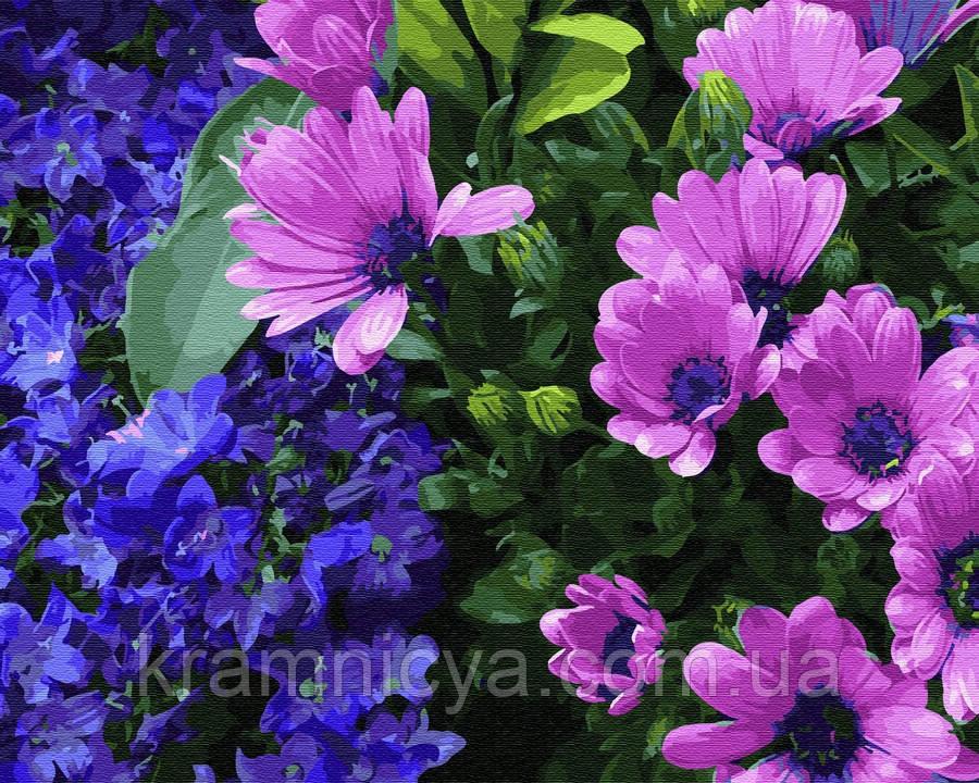 Картина по номерам Brushme Сиреневые хризантемы, 40х50 (GX25350)