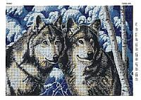 """Схема для вишивки бісером """"Вовки"""" D-396"""
