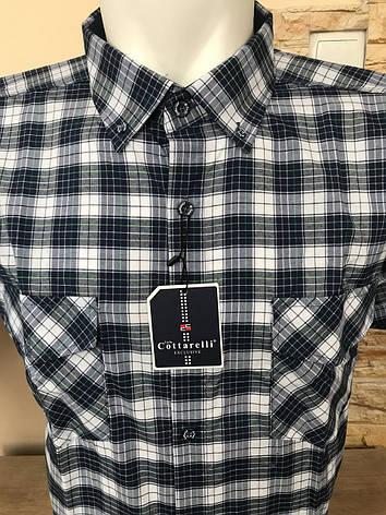 Рубашка коттон Cottarelli, фото 2