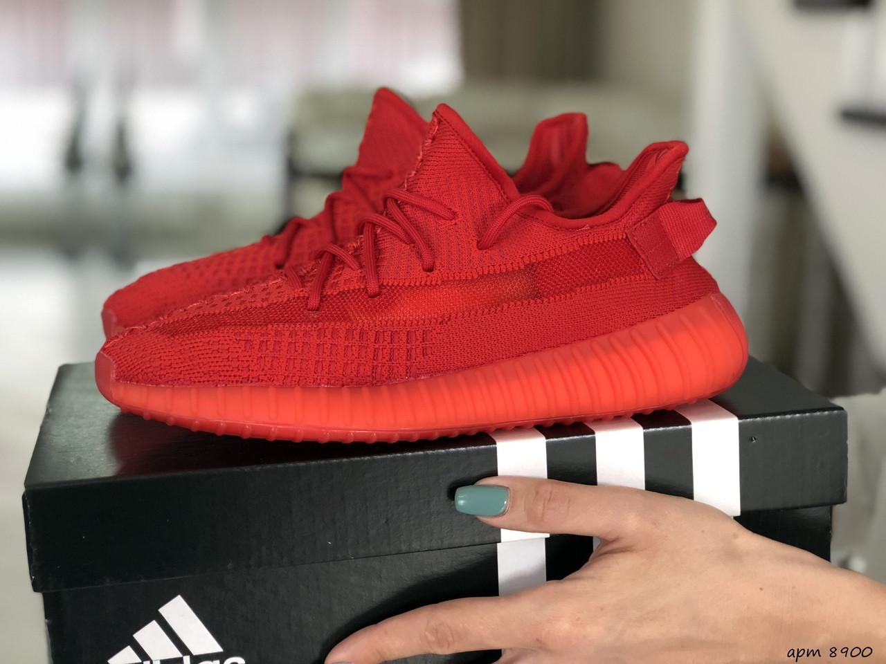Кросівки жіночі Adidas x Yeezy Boost