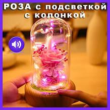 Роза в колбі Glass Rose з Bluetooth-колонкою і підсвічуванням. Роза в колбі з підсвічуванням і музикою. Оптом
