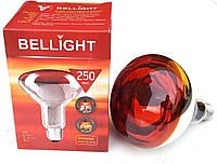 Лампа инфракрасная ИКЗК 250 Вт Е27 Belligth в коробочке + Видео