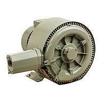 Двухступенчатый компрессор низкого давления Hayward Grino Rotamik SKS 156 2VT1.В (156 м3/ч, 380В)