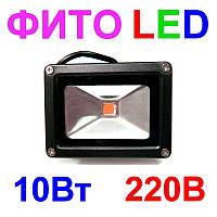 Фито прожектор для растений 10Вт 220В