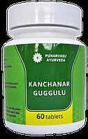 Канчнар гуггул 60 таб / Kanchnar Guggulu -Очищение лимфатической системы,опухоли, варикоз