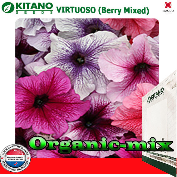Петуния крупноцветковая Виртуоз Berry Mixed, 250 семян, ТМ KITANO SEEDS (Голландия)