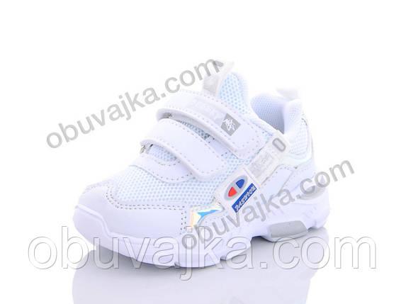 Спортивная обувь оптом Детские кроссовки 2020 оптом от фирмы KLF(22-27), фото 2