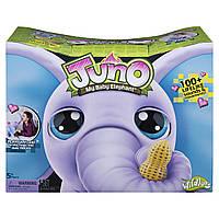 Интерактивная игрушка Слоненок Джуно от Спин Мастер / Wildluvs Juno My Baby Elephant by Spin Master