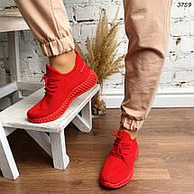 Красные кроссовки, фото 3