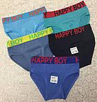 Трусы детские на мальчика Happy Boy, фото 2
