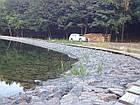 Укрепление берега габионами, габионными матрацами, берегоукрепление склонов, фото 2