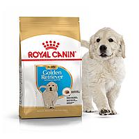 Royal Canin Golden Retriever Puppy Сухой корм для щенков породы Золотистый ретривер 12 кг