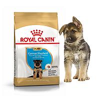Royal Canin German Shepherd Puppy Сухой корм для щенков породы Немецкая овчарка 12 кг
