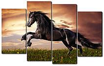 Модульна картина Вороний кінь на заході Код: W1770