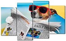 Модульна картина Собака з газетою Код: W2635