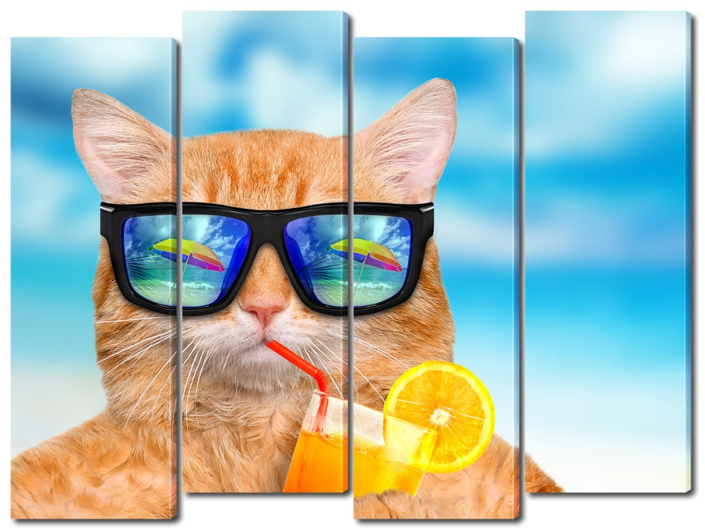 Модульная картина Кот на пляже Код: W2634