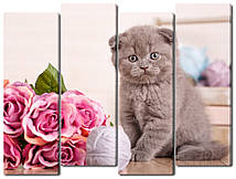 Модульна картина Кошеня і троянди Код: W1460