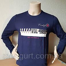 Футболка мужская с длинными рукавами (лонгслив) с принтом, фото 2
