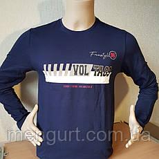 Футболка мужская с длинными рукавами (лонгслив) с принтом, фото 3