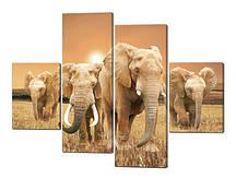 Панно из 4-ех частей Модульная картина Слоны Код: W207