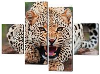 Картина из частей Леопард оскал Код: W301