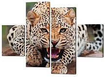 Картина з частин Леопард оскал Код: W301