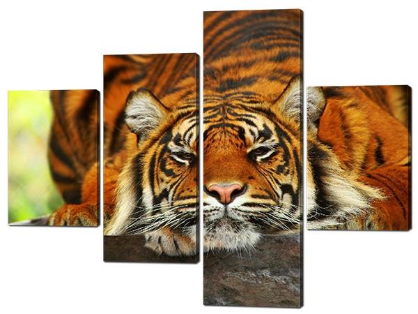 Картина из частей Тигр отдыхает Код: W535