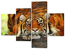 Картина з частин Тигр відпочиває Код: W535