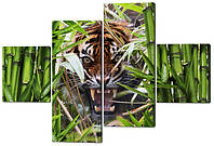Сегментная картина Оскал тигра W534