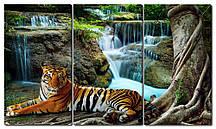 Модульна картина Тигр на водопої Код: W6723