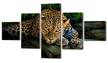 Модульна картина Леопард на каменях Код: W299