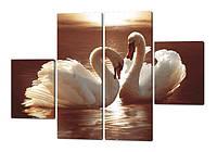 Модульная картина Два лебедя на закате Код: W211