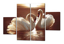 Модульна картина Два лебедя на заході Код: W211
