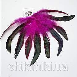 Перья натуральные фазана №2, лиловый