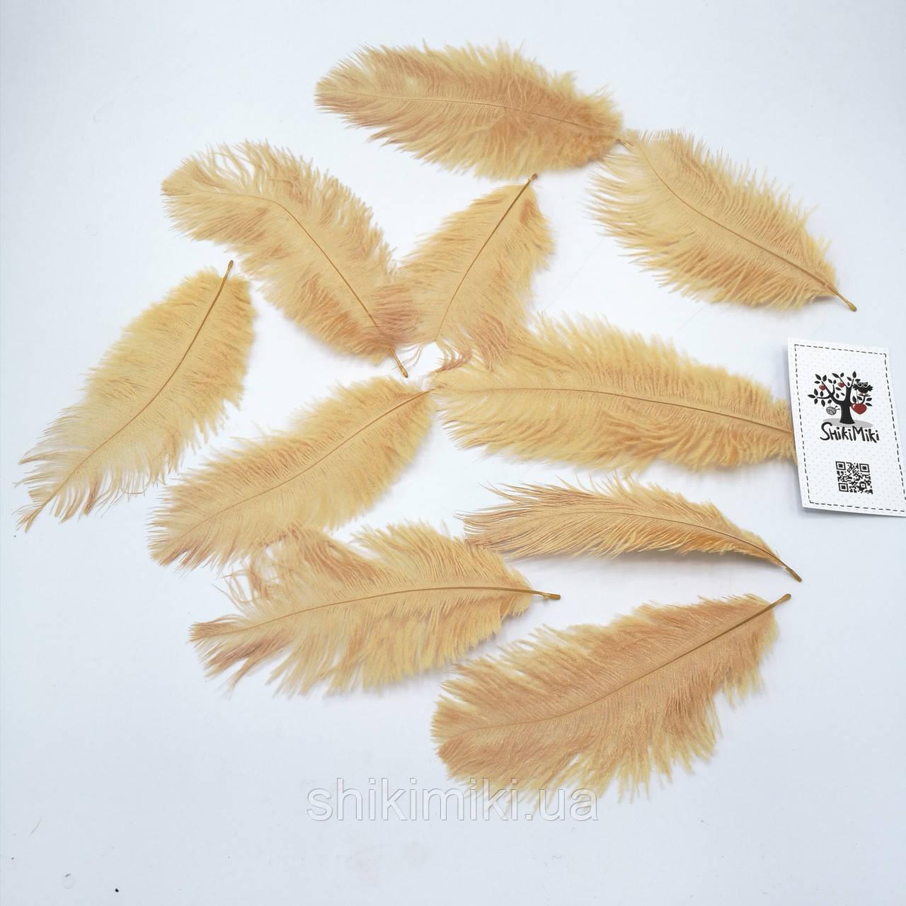 Перья натуральные страусиные №1, карамельные