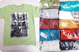 Футболка подростковая модная AMSTERDAM на мальчика 10-14 лет купить оптом со склада 7км Одесса