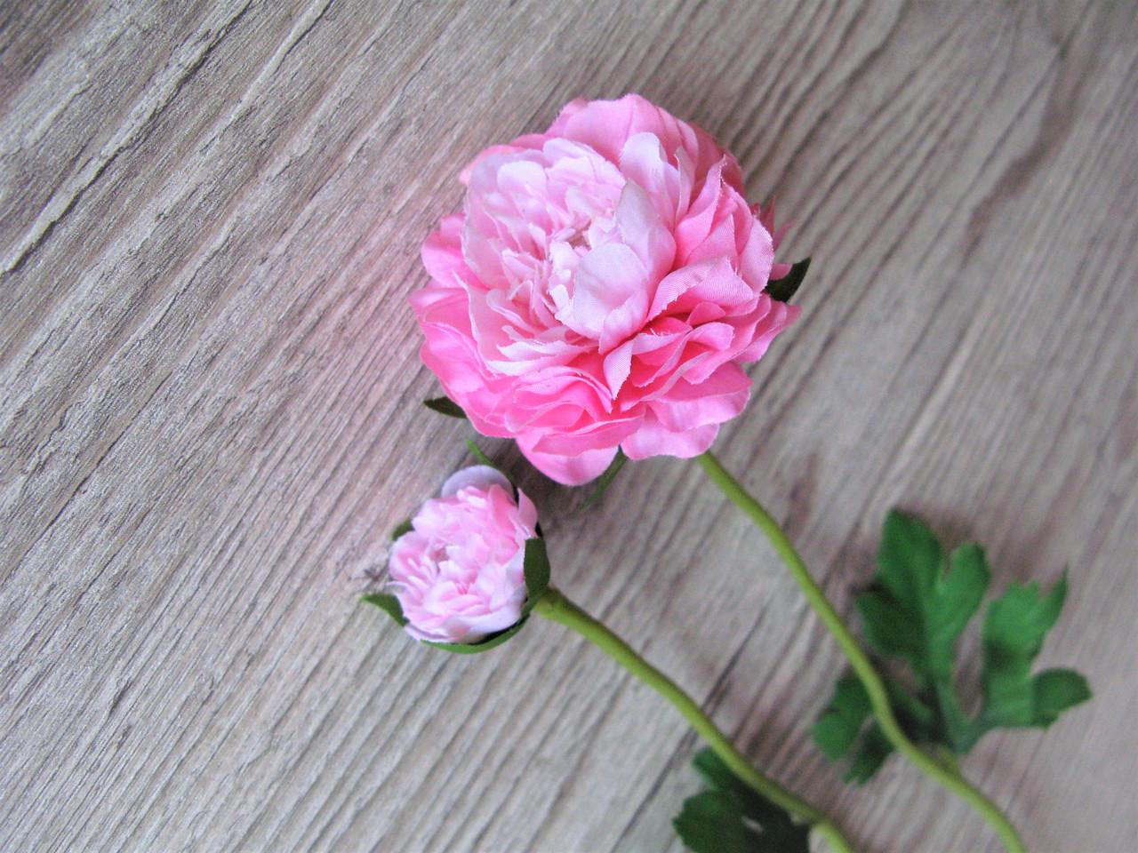 Рунункулюс (лютик) на стебле с бутоном нежно розовый