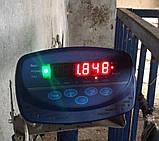 Весы для животных 750х1250 мм, фото 2