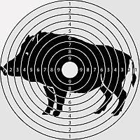 Мишень малая (20x20) - 50 шт