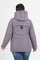 Жіноча весняна куртка великого розміру Клео, фото 3