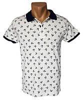 Мужская футболка Leonidas - №4261