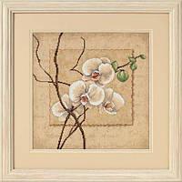 """35176 Набор для вышивания крестом """"Восточная орхидея//Oriental Orchids"""" DIMENSIONS"""